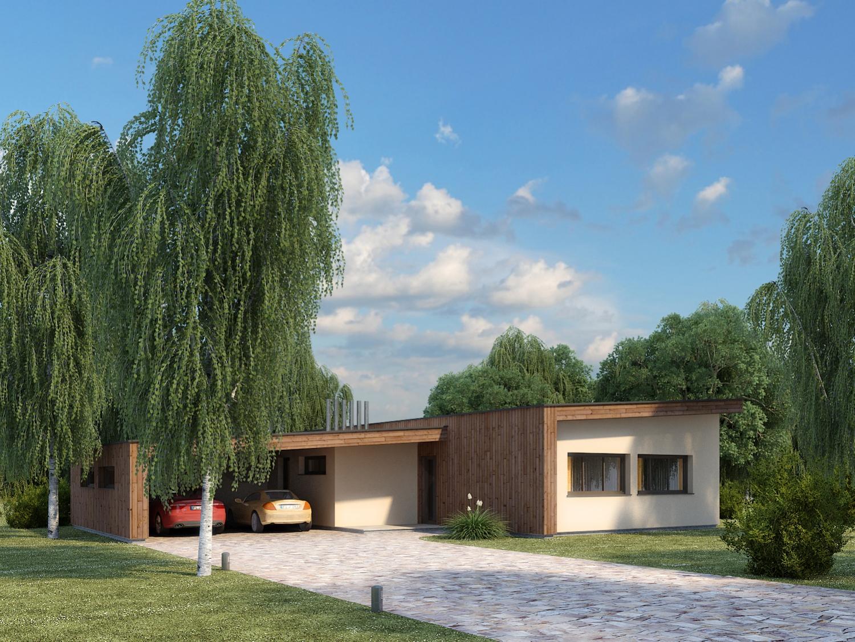 Mājas projekts Agita